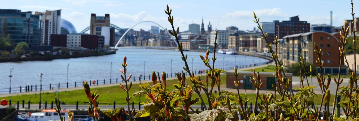 What's On In Newcastle upon Tyne